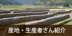 産地・生産者紹介