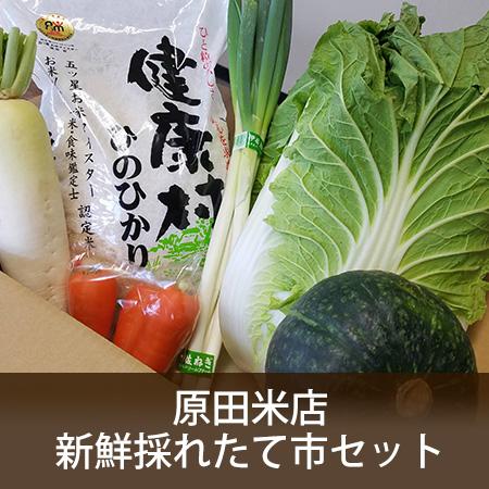 原田米店新鮮採れたて市セット